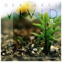 Deadbäss & David Strofürgaard - Vivid